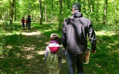 Balade sylvatique : «Parent ou Grand-parent / Enfant»