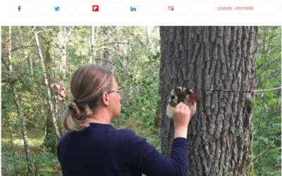 Marie-Laure, journaliste à la Nouvelle République, a testé la sylvothérapie avec Jardin Passion Nature ! Elle vous raconte son expérience…
