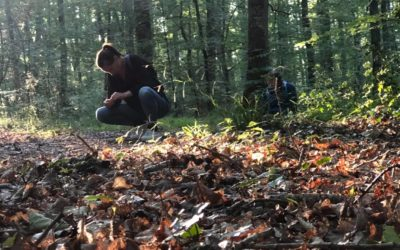 «En immersion dans la forêt»