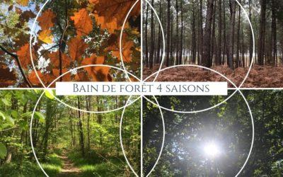 Bain de forêt 4 SAISONS